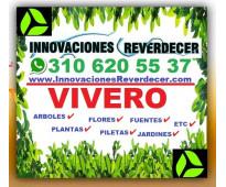 ⭐ VIVERO, Grama, Pasto, Plantas, Arboles, Flores, Cesped, Semillas, Tierra, Mata...