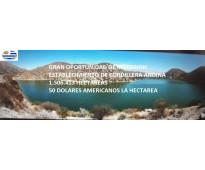 Gran oportunidad de inversión-1.506.413 hectáreas-50 usd por hectárea pais: arge...