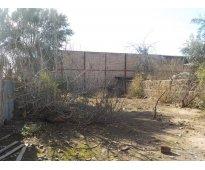 San felipe vendo terreno 859 m2 en av. chacabuco