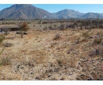 Putaendo dueño vende urgente terreno 5000 m2 en $ 19 millones