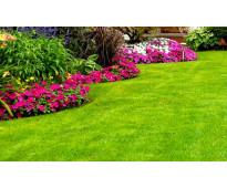 Riego y jardineria general rancagua