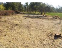 Rinconada de silva dueño vende directo terreno plano 2250 m2
