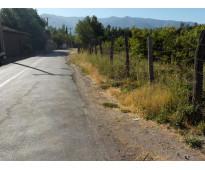 TERRENO 6400 M2  CON 420 DURAZNOS CARSON RINCONADA DE SILVA PUTAENDO
