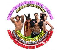 Vedettos strippers pedro aguirre cerdá fono +56997082185